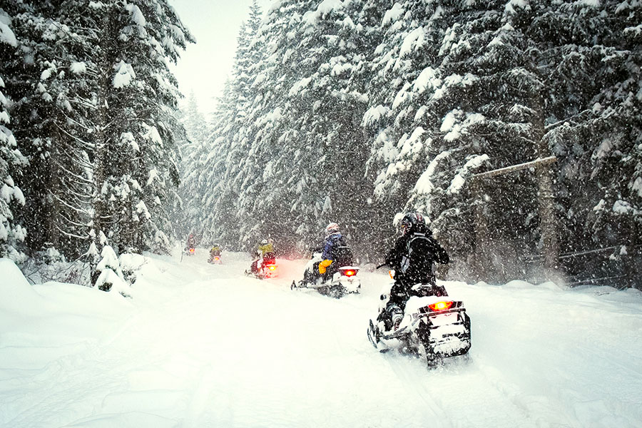 snowmobiles in the woods