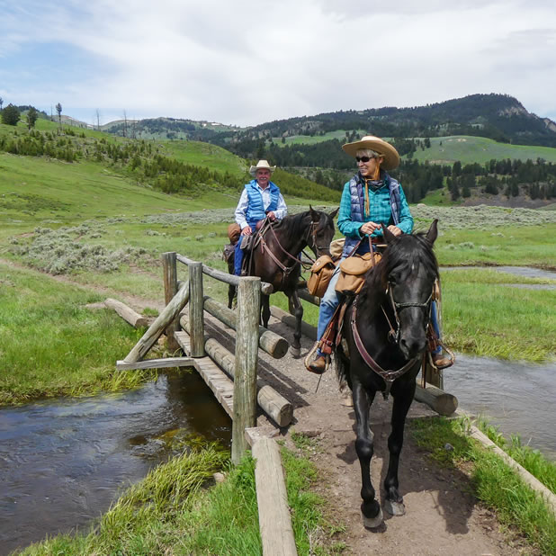 trail riding in Yellowstone