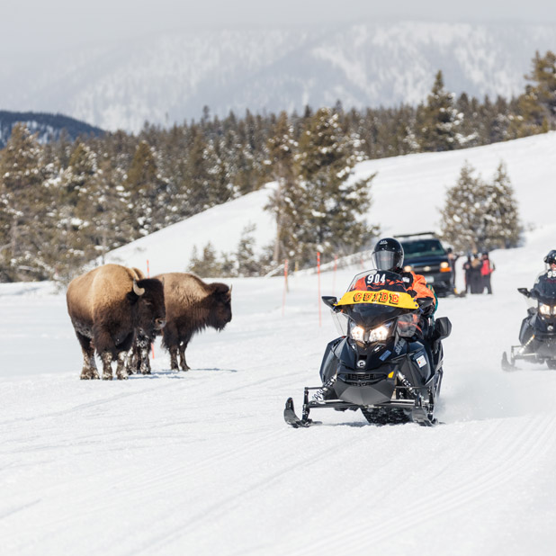 Snowmobiling at Sage Lodge